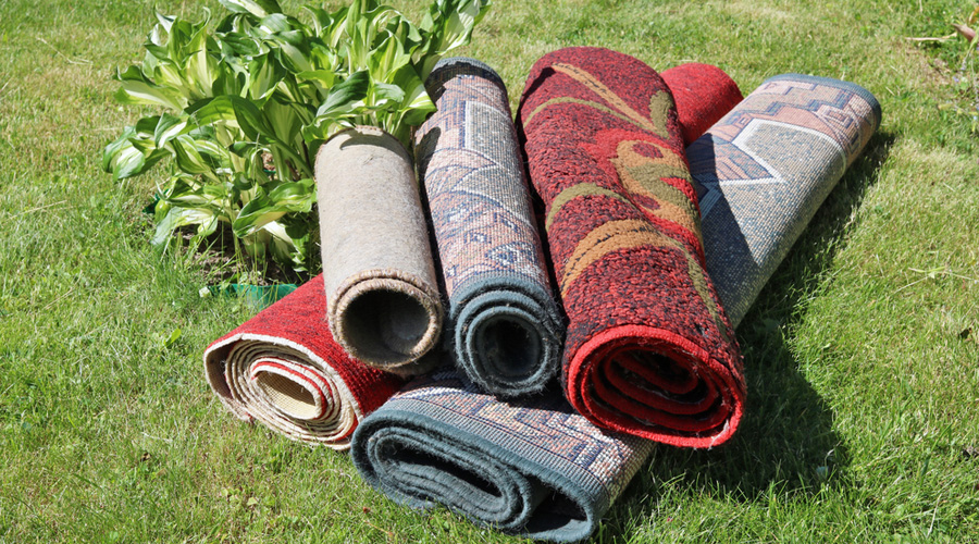 Can-Carpets-Be-Cleaned-Too-Often