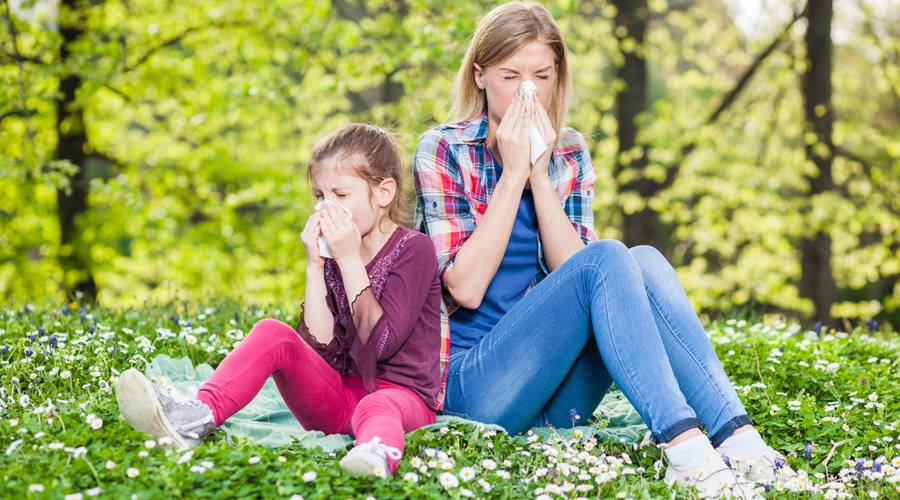 tips-for-allergy-sufferers