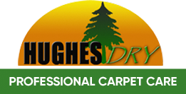 Hughes Dry Professional Carpet Care