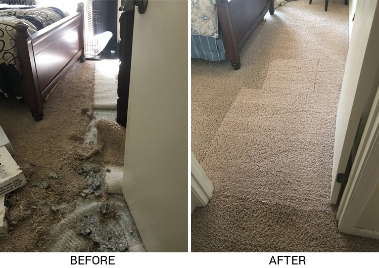 ... and insured technicians have the expertise to resolve many carpet repair issues in a matter of hours. We offer peace of mind and satisfaction and are ...
